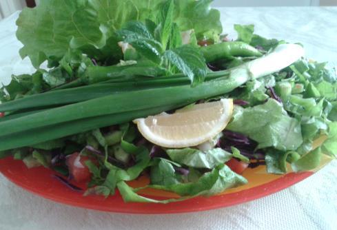 Salaş Salata